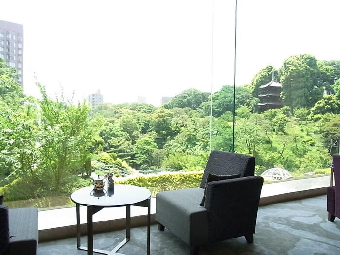 ウエディングシーンでも人気の歴史あるホテル、椿山荘のバンケット棟3Fにあるティーサロンです。全面仕切りの殆どないガラス張りの窓からは、緑いっぱいの庭園を眺めることができます。ゆったりと優雅な気分になれる洗練された人気店です。