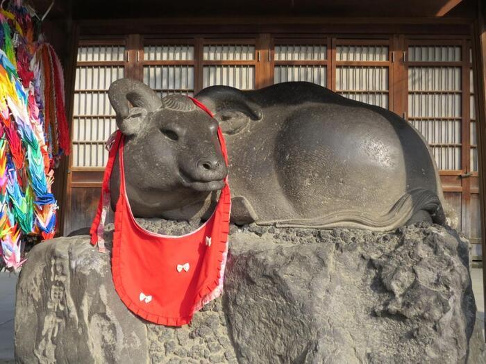 """こちらの神社は、""""撫で牛""""が有名。自分の体の悪い部分を撫でた手で、牛の同じところを撫でると良くなると言われています。やさしい表情の牛をゆっくりと撫でていると、心も穏やかになれそうな気がしますね。"""