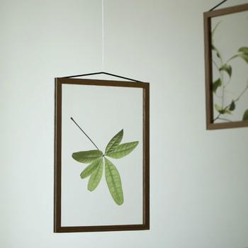 絵柄は全部で9種類あり、A5・A4・A3の3サイズ展開。押し花のような繊細なプラントポスターを飾れば、お部屋にいながら自然を感じられます。