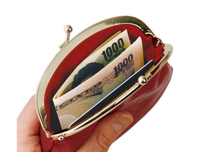 カードはそのまま、お札は二つ折りにするとスムーズに入ります。