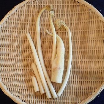 うどは大きく分けて2種類あります。  スーパーで見かける全体的に白っぽいうどは、光を当てないようにして栽培された、軟白うどと呼ばれるもの。白くて柔らかいうどです。軟白うどは苦みやクセが少なく、香りもマイルドなので食べやすいうどです。