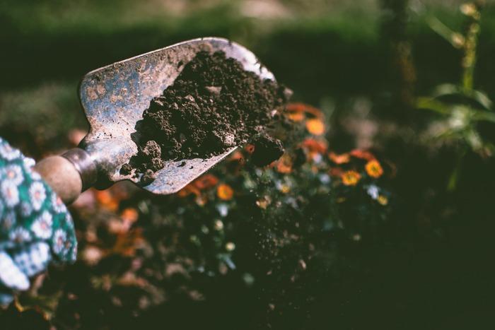 「自分の庭で世界を変える」という夢があるメアリーは、有名ガーデンデザイナーのアシスタントになった。しかし散々コキ使われた上に、デザインノートを盗まれクビにされてしまう。全てを失ったメアリーは「チェルシー・フラワーショー」で金メダルを獲ることを目指すことに――。