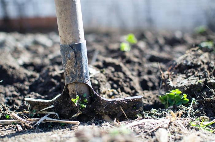 更生刑務所に移送されたコリンは、刑務所長から庭造りを命じられる。最初は仕方なく庭造りを始めたコリンだったが、徐々に仲間たちとのガーデニングに喜びを見出していき――。