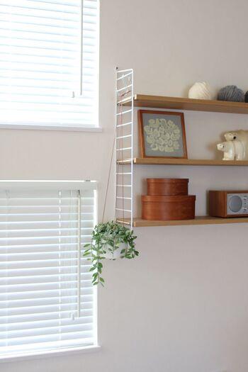 飾るときは、落下しないようにしっかりと留めて、高さにも注意。安全性を確認しながら「目線よりも少し上」に飾れば、さまざまな角度から楽しむことができます。 写真のように、小さめの鉢植えでトライしてみてはいかがでしょうか。