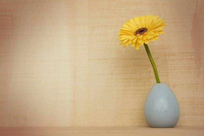 旬の花を気軽に楽しめるのも一輪挿しのいいところ。お馴染みの「ガーベラ」ですが、実は3月~5月が旬。ひょろっと長い独特のフォルムが印象的で、重なり合う小さな花弁がお部屋をパッと明るくしてくれそう。