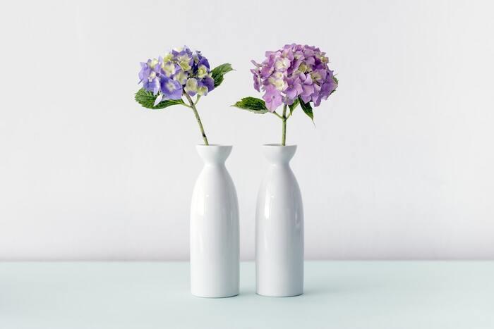 5~6月が旬のバラやあじさいもこれからの季節を彩る花。存在感と華やかさがかさがあるので、シンプルな花器でもひときわ存在感を放ちます。