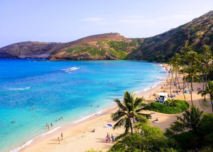 《おうちで作ろう》南国の風を感じて♪心晴れ渡る「ハワイアン料理」レシピ集