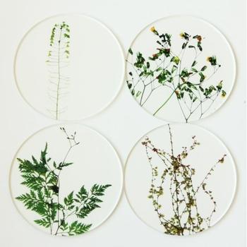 透明感あふれるアクリルの素材とさわやかなグリーンの野の花は、食卓にナチュラルで清々しい空気を運んでくれそう。φ90×D3mmサイズで柄は、ニガナ、ナズナ、ヤブジラミ、ヒメスイバの4種類。統一感がありながらそれぞれ違った表情を見せてくれるのも素敵。
