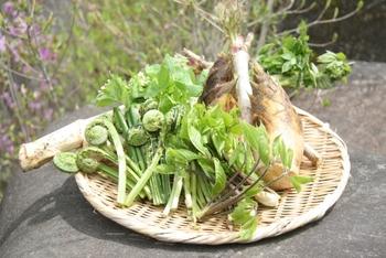慌ただしく暮らす日常では、ゆっくりと季節を楽しむ時間が持てないことも。それなら意識して旬の食材を取り入れてみましょう。栄養価も高く味も濃い旬の食材を口にすれば、心も体も元気になります。  今の季節なら、そらまめやたけのこなどの春野菜がおすすめ。春から初夏を感じるような春野菜の香りをたっぷりと味わえたら、自然の恵みに感謝の気持ちが芽生えます。