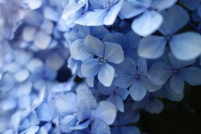 落ち込んでいる時には、気持ちを静めてくれる青は不向きかもしれません。ゆっくりと静かに過ごしたい日に身に着けたい色です。特にアイボリーやブラウン、ピンクなどと相性が良く、さまざまな色と合わせやすいのが魅力。