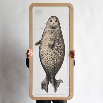 絶滅の危機に瀕している、「サイマーワモンアザラシ」が大きく描かれたインパクト抜群なポスターです。特注サイズのフレームがセットになっており、ならとウォールナットの2種類からお好みのものを選べます。縦に飾っても横に飾ってもおしゃれなデザインなので、さまざまなスペースにフィットします。