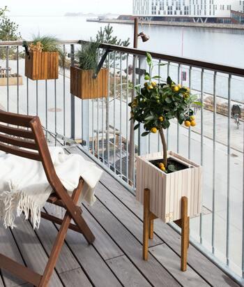 テーブルとチェアだけでも、十分カフェ気分が味わえますが、そこに植物があればさらに素敵な空間になりますね。お気に入りの花やハーブをベランダで育ててみるのも楽しいですよ。