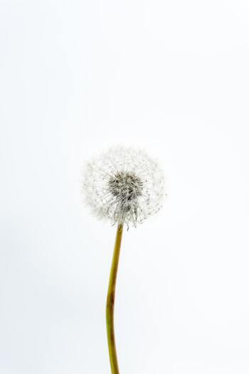 人生で本当にやりたいことって?夢や目標を見つけるヒントと質問リスト