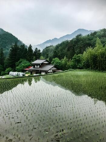 奇譚はその不思議さ、奇怪さが重要なポイントですが、小説ではなく伝承も含まれます。日本には、迷信とも言われる不思議な言い伝えがたくさんありますよね。そんな、自然の中に潜んでいそうな奇譚が読みたい人には、「里山奇談」がおすすめです。