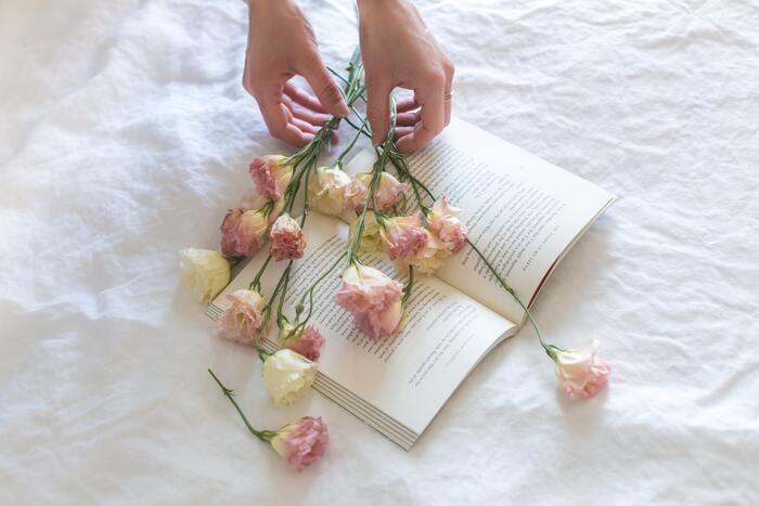 ときには逃げ出してもいい。頑張り続けるあなたへ贈る、癒しと許しの言葉