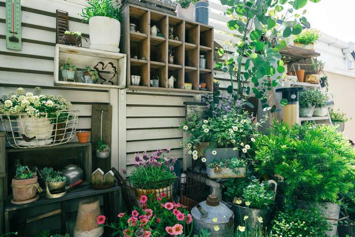 お庭がなくても楽しめる【ベランダガーデニング】のある暮らし