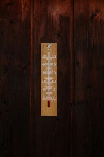 気温と湿度が上がり始めると、活発に活動し始めるダニ対策もしっかりしていきたいところ。今のうちに冬の汚れをしっかり落として、夏に備えましょう。