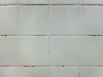 カビを発生させる原因は「高温」×「高湿度」×「エサ」の3要素。  具体的には「室温約25~30℃」「湿度65%以上」でカビの原因菌の活動が活発になります。  さらにカビのエサとなるのは、「ホコリ」や「ゴミ」「汚れ」。  雨天で窓も開けにくい梅雨は、換気が悪くなりホコリもたまりやすく、まさにカビにとって最高の環境が整ってしまう、というわけです。