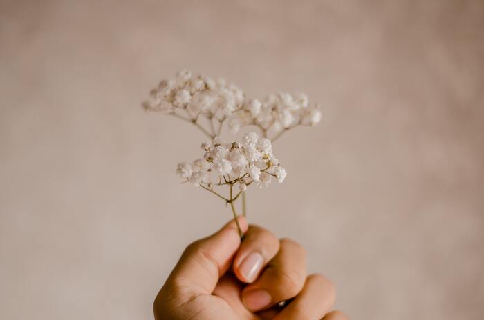 気持ちが乱れたときは「今」に立ち返ろう。禅のことばと、心を守る方法