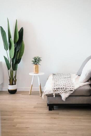日の当たらない場所で過ごすことが、1番簡単な対策かもしれませんね。紫外線が強くなる季節は、お部屋のレイアウトも見直してみましょう。ソファや椅子はできるだけ日の当たらない場所へ。日がよく当たる窓の近くには、観葉植物を並べてみてはいかがでしょう。