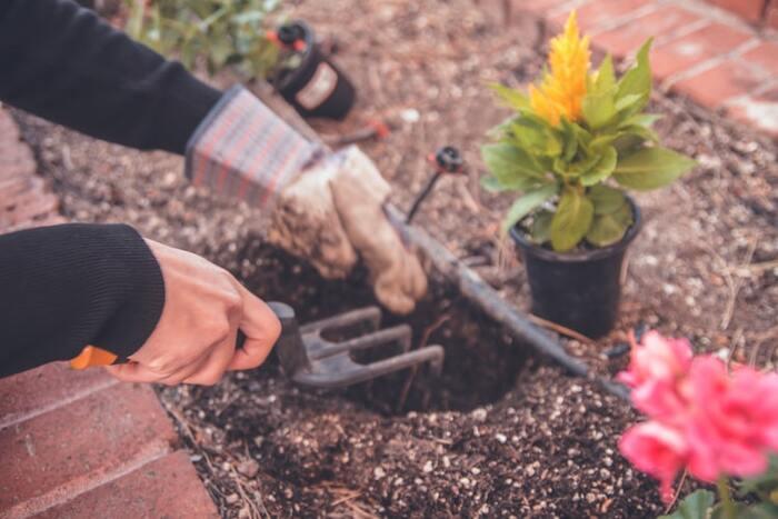 お外に出るのが難しい今だからこそ、ガーデニングで憩いの空間を作っちゃいましょう♪ガーデニングには力仕事も多く、一汗かくことができます。お庭がない人はベランダでもガーデニングを楽しめますよ。