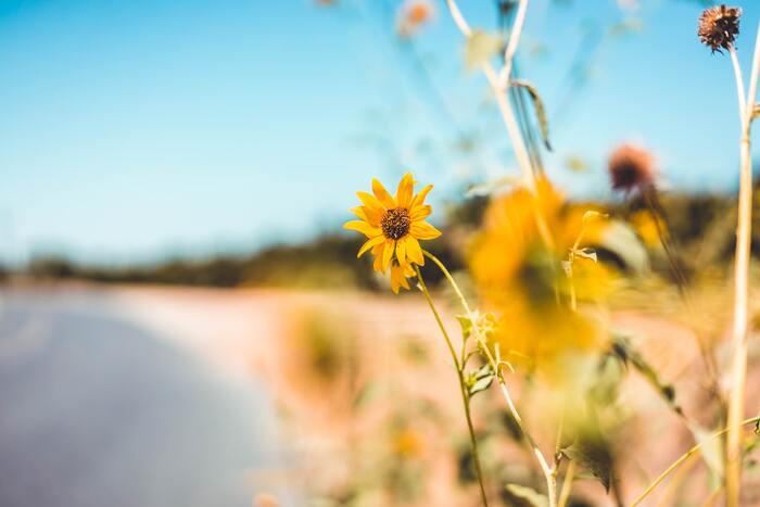 意外と知らない、汗ばむ季節の肌荒れ対策。 正しい知識でなめらか潤い肌に