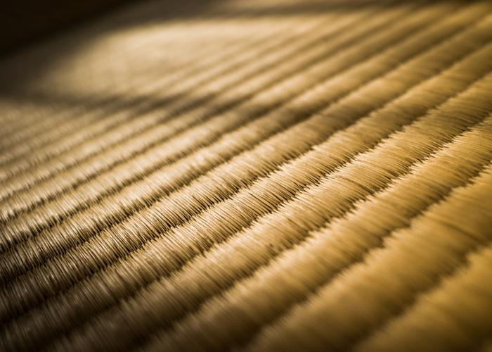 い草のアイテムに使われるのは、草の茎の部分です。しっかりと密度のつまったい草は、畳表やござなどに加工され、私たちの暮らしに身近なアイテムとして使われています。