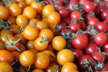 野菜や果物は旬の時期に収穫量も増えます。そのため価格も手ごろに。そして、おいしくて新鮮となれば、積極的に旬の食材を食卓に取り入れたくなりますね。