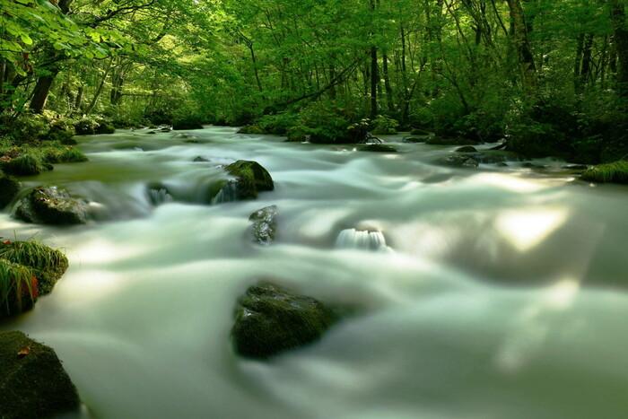 """十和田八幡平、三陸復興の2つの国立公園、津軽、早池峰、栗駒といった7つの国定公園、数多の景勝地が点在しているように、「北東北」の自然は、世界を見渡しても稀にみる程""""豊か""""と言えるでしょう。  【「十和田八幡平国立公園」を代表する景勝地「奥入瀬渓流」。十和田湖の唯一の流出河川で、湖の東岸・子ノ口(ねのくち)から北東方向へと流れ、焼山で東に向きを変え、市街地の南を流れて、上北郡おいらせ町と八戸市の境界で太平洋に注ぐ。(画像は、奥入瀬渓流の見所の一つ「三乱の流れ」)】"""