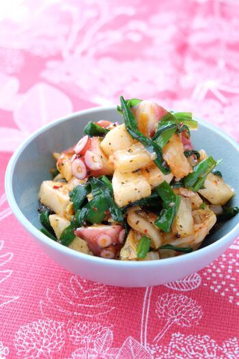 こちらはタコを使ったキムチの和え物。タコと長芋、キムチのそれぞれ異なる食感が楽しめます。ニラが彩りと香りをプラスしてくれ、黒ゴマで風味よく仕上がります。