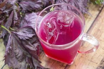 シソは葉が緑色の青ジソと、紫色の赤ジソに大きく分けられます。もともとの品種としては、「紫蘇」という名前を見ても分かるように、赤ジソがあり、青ジソはその変種であるといわれています。  赤ジソはその独特の色合いから、梅干しや紫蘇ジュースなどに用いられることが多く、青ジソはお料理に彩りを添え、風味をアップさせる薬味として使われます。