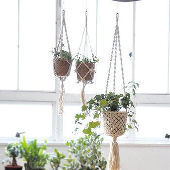 開放感ある窓辺を作りたいなら、「グリーンを吊るす」方法をぜひ試してみて。マクラメ編みのコットンロープ&天然素材のポットは、ナチュラルな表情が魅力。グリーンの美しさを引き立てます。