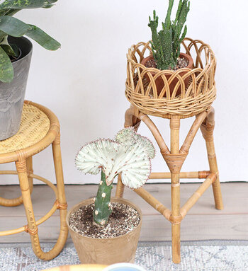 経年で風合いを増すラタン素材のフラワースタンド。アンティークのような表情の豊かさもあり、グリーンを個性豊かに演出してくれます。床置きの鉢を横に置いたり、高さを変えたディスプレイを楽しんでみませんか。