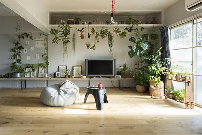 テレビ周りに植物と額縁をバランスよく飾り付けた、まるでお店のようなたたずまいの空間です。植物を天井や壁から吊るして、狭いスペースでも有効活用して楽しめます。小さな植物もハンキングにすると存在感が際立って空間の主役にもなりますよ。植物好きの方にぜひチャレンジしてほしいコーディネートです。