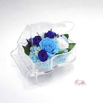 青のバラは「夢が叶う」という花言葉があります。新婚さんにはこれからたくさんの夢を叶えていって欲しい気持ちを込めて贈りたいですね。
