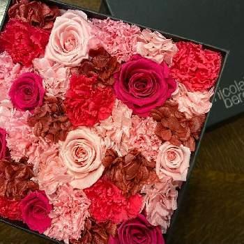 赤やピンクのバラとカーネーションがたっぷりと使ったアレンジ。シックな黒の箱に入っているのが、赤を更に引き立たせます。ボックスに入ったお花は宝箱のようで、疲れたときなどに眺めて癒しになれば嬉しいですね。