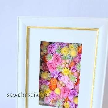 ピンクのバラには「上品」「可愛らしい」という意味があります。かわいい花嫁さんに、ピンクのアレンジはいかがでしょうか。白枠に金色のラインがあしらわれた品のあるフレームに、お花がたくさん詰められていてお祝い品にぴったりですね。
