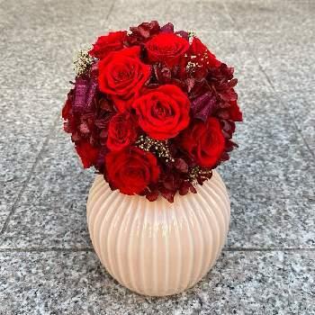赤のバラがたくさん入ると本当に豪華になりますね。存在感がありゴージャスな赤は、きっと忘れられないお祝いになりそうですね。