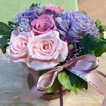 紫はどことなく気品があり、上品な印象。紫のバラの花言葉には「尊敬」という言葉が含まれています。尊敬するお母さんに紫の花を贈ってみてはいかがでしょうか。