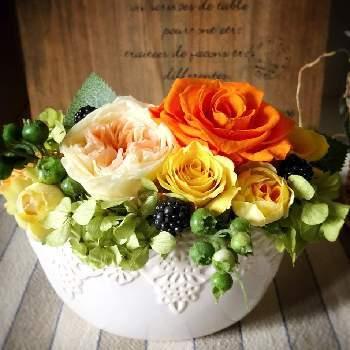 いつも優しいお父さんに贈るなら「信頼や絆」の意味を込めて、オレンジのバラにしてみてはいかがでしょうか。お父さんへの信頼の気持ちが届くでしょう。