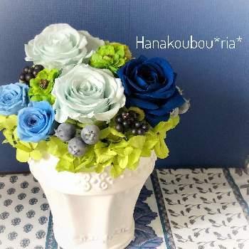 青は男性に贈りやすい色ですが、生花にはありません。その分プリザーブドフラワーの青いバラは特別感があります。神秘的な青いバラに、お父さんもビックリされるでしょう。そして青や水色は涼しげな印象を受けるので、夏に向けても◎