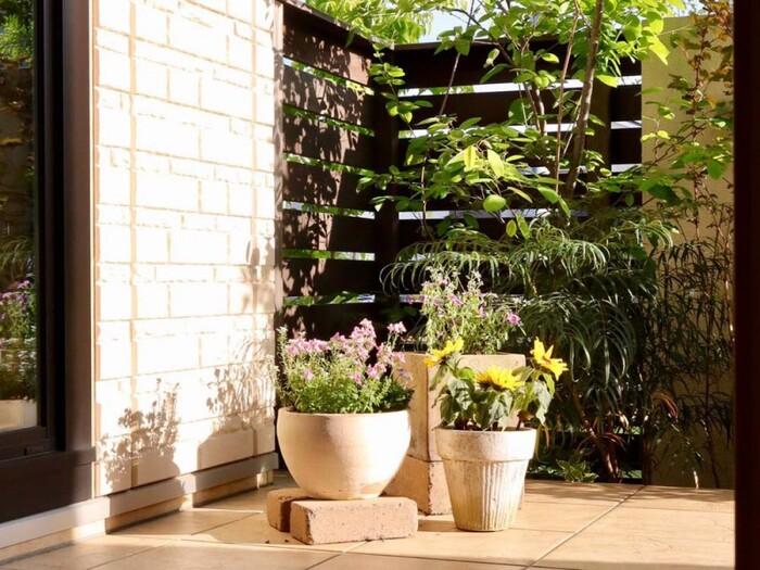 ベランダガーデニングを始めるなら、知っておきたいのが植物を育てる環境のこと。たとえば、ベランダで良く日が当たる時間、日陰になる時間などは知っておくと良いでしょう。