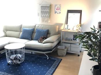 お部屋のなかで特に大きな面積をしめるアイテムに寒色系を取り入れると、雰囲気を一気に変えることができます。 たとえば、ラグを新調してみるのもおすすめ。床の色合いにかかわらず、涼しさを演出してくれることでしょう。