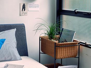 ベッドサイドに便利な高さのあるカゴは、癒しの植物、寝る前に読んでいる本、目ざまし時計など必要なものだけ入れてシンプルに利用するのがおすすめです。