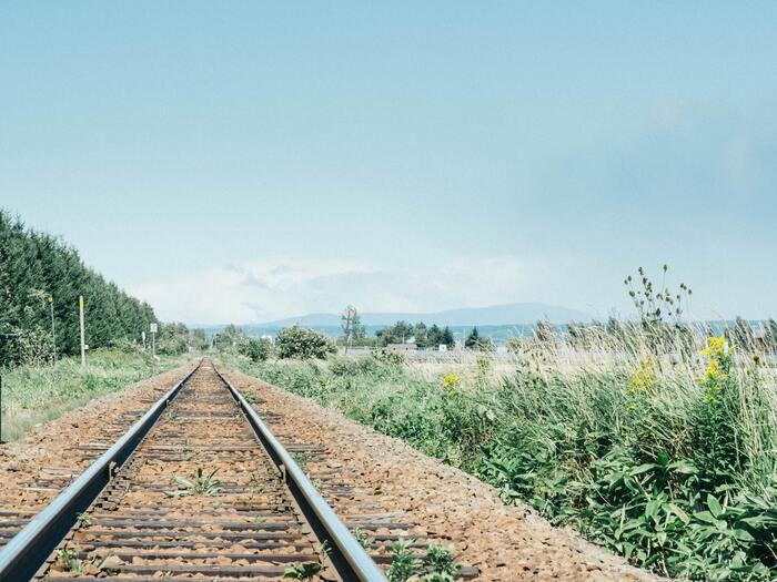 ゆっくり時が流れていく。夏を感じる《ほのぼのストーリー邦画》はいかが?