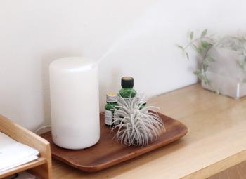 アロマオイルの代わりにハッカ油を使い、ハッカの香りでお部屋を満たすのもおすすめです。お部屋全体がハッカの香りで包まれるので、暑い夏でも気分爽快に過ごせそうです。玄関や窓際など、虫の出入り口になりそうな場所で使えば、虫除けにもなっていいですね。