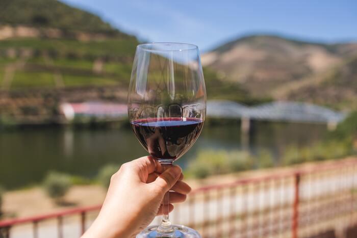 『ワインの手引き~フランス編~』ボルドー・ブルゴーニュ、産地の魅力を味わおう