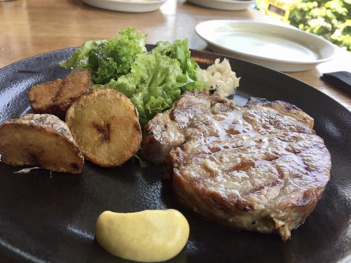 ランチプレートのひとつ「和豚もちぶたのローストポーク」は、しっとりジューシーな豚肉にマスタードとマヨネーズを混ぜたソースを添えていただきます。お魚やラザーニャなどラインナップが豊富で、選ぶのが楽しいと評判です。