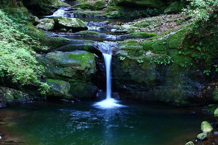 古くから修験道の地として知られる犬鳴山渓谷には豊かな自然が広がっており、たくさんの美しい滝が点在しています。よく整備されたハイキングコース沿いには、随所に景勝地となっている滝があり、森林浴をしながらマイナスイオンをたっぷりと浴びることができます。