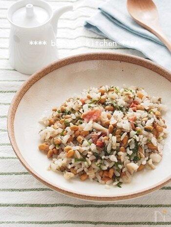 梅やしそ、納豆を加えて作るチャーハンのレシピ。少なめのごはんでもしっかり満足できるよう、工夫されています。腸内環境を整えてくれる食材がたっぷりなので、夏の弱った胃腸も元気になること間違いなし!